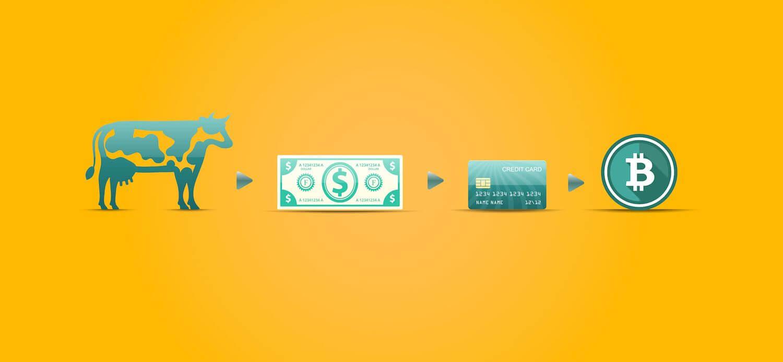 Bitcoin, ekonomické zákony a skutočná hodnota, bez servítky
